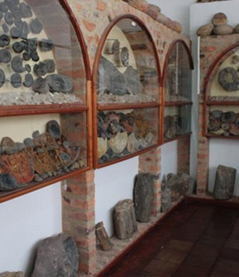 turismo museo paleontologico